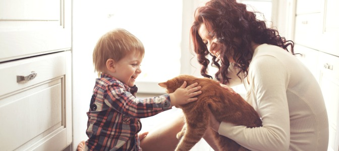 The Benefits of Online Makeup School for Moms