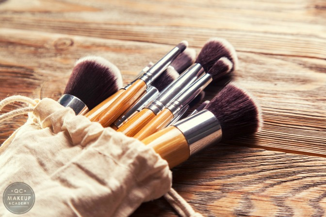 Brushes for a professional makeup starter kit