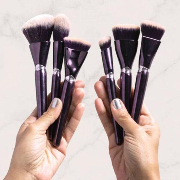 Makeup artist kit article, ANISA brushes, photo 1